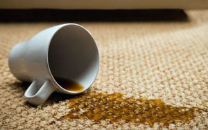 The Village Cleaners Carpet Cleaning